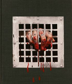 Dan Witz: In Plain View (hardcover limited edition)